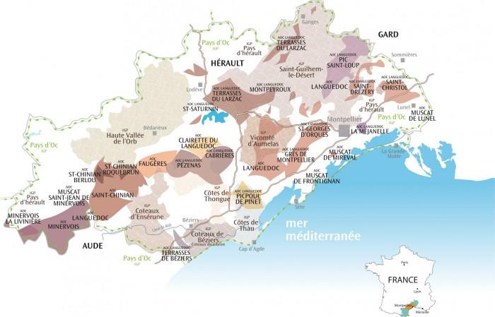 viticulture dans le département de l'Hérault